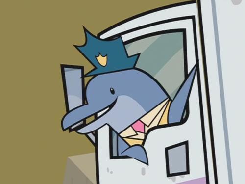 Delfin WTF